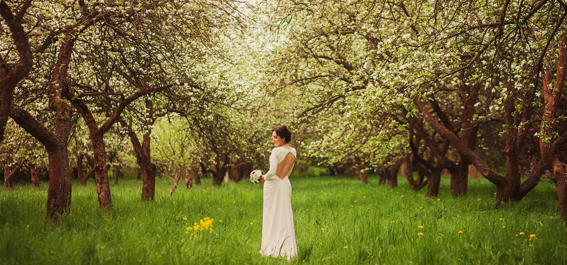 4 важных советов по организации свадьбы в саду